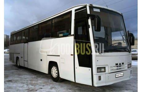 фотография Автобус MAN (385)