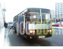 Автобус Ikarus Trumpf Junior