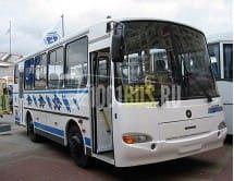 Автобус ПАЗ-4230-03 Аврора