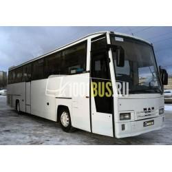 Автобус MAN (385)