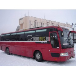 Автобус Hyundai (312)