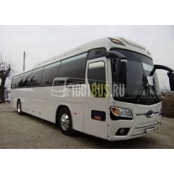 Автобус Kia Grandbird (421)