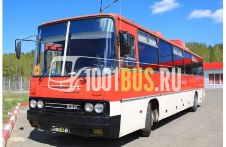 фотография Автобус Ikarus