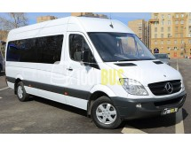 Микроавтобус Mercedes Sprinter 313 (040)