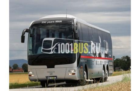 фотография Автобус MAN Lion`s Coach