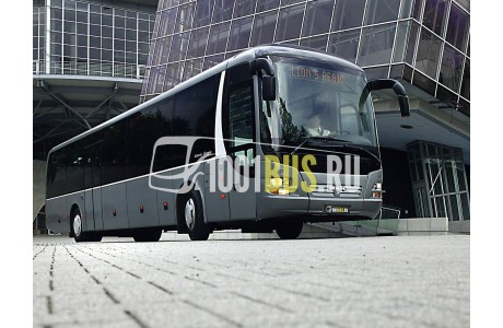 фотография Автобус MAN Lion`s Regio