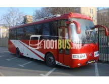 Автобус Hyundai AeroTown (810)
